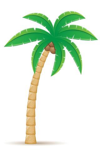 ilustração em vetor palmeira árvore tropical
