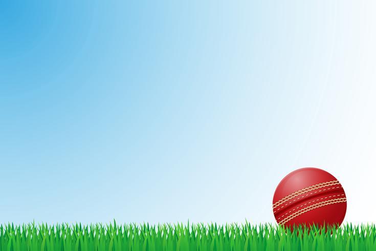 ilustração em vetor campo grama de críquete