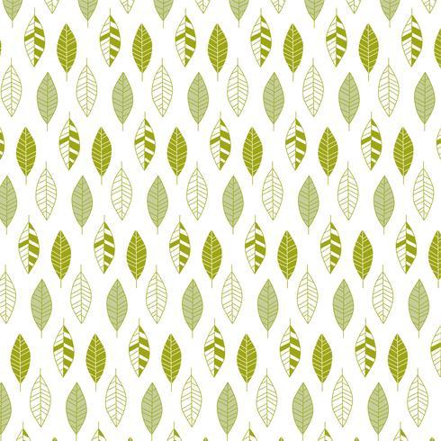 padrão de folha verde vetor