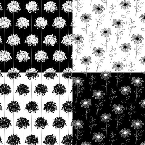 padrões florais botânicos de mão branca e preta desenhada vetor