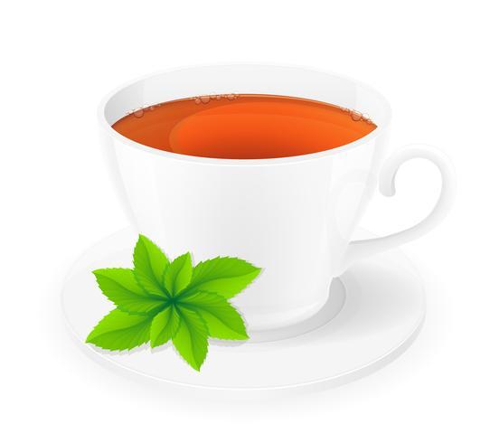 xícara de porcelana de chá com ilustração vetorial de hortelã vetor