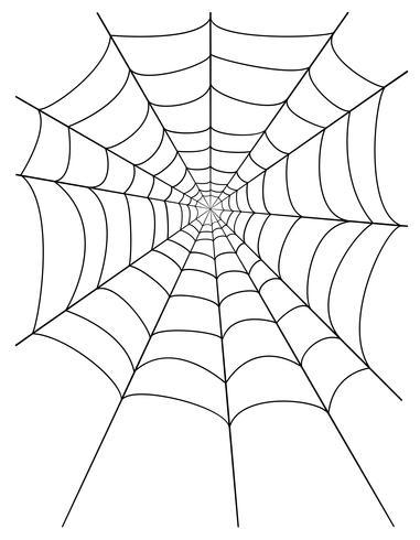 ilustração de estoque vetorial de teia de aranha vetor