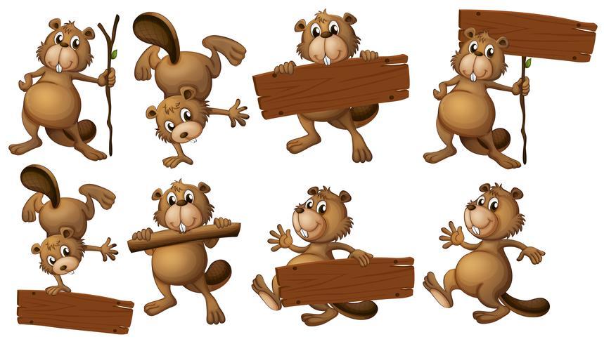 Um grupo de castores com tábuas de madeira vazias vetor