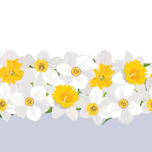 Padrão sem emenda floral. Fundo da borda da flor. vetor