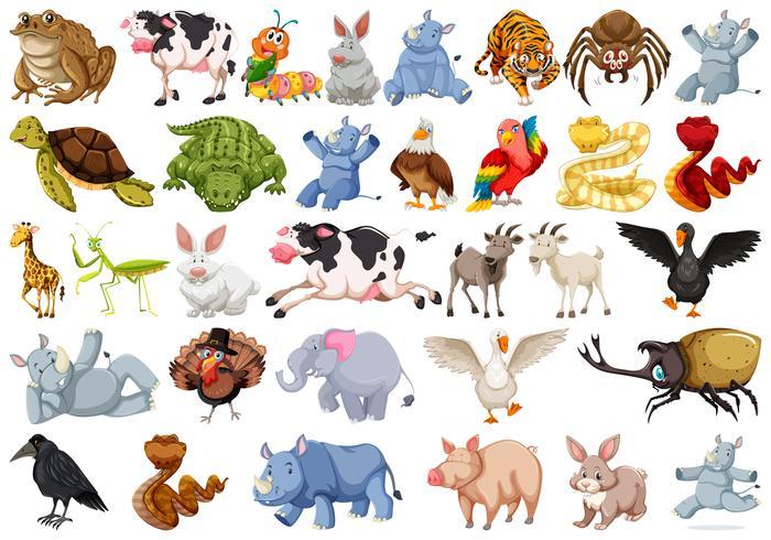 Conjunto de caracteres de animais vetor
