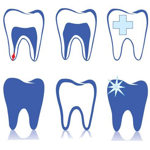 Conjunto de dentes. Sinal de dentes brancos. Coleção isolada médica dental. vetor