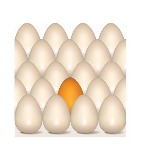 Ovos de Páscoa assinar padrão sem emenda. Fundo de cartão de Páscoa vetor