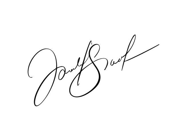 Assinatura manual para documentos em fundo branco. Caligrafia de mão desenhada lettering ilustração vetorial vetor