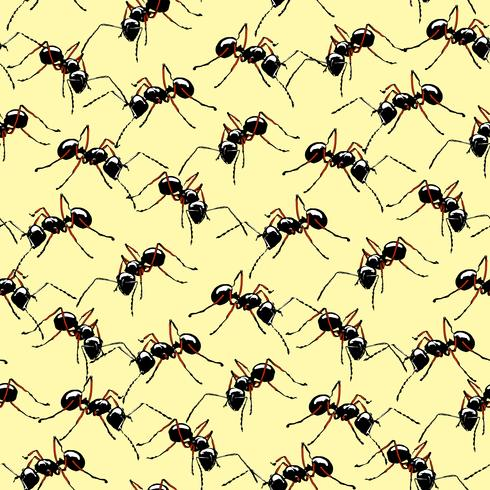 Fundo sem emenda das formigas realísticas macro. vetor