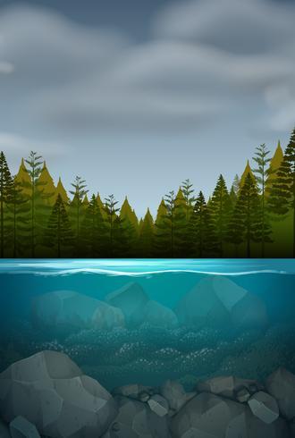 Uma paisagem natureza subaquática vetor