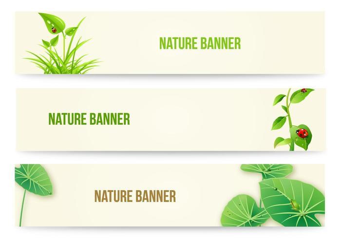 Pacote de vetores de banner de natureza