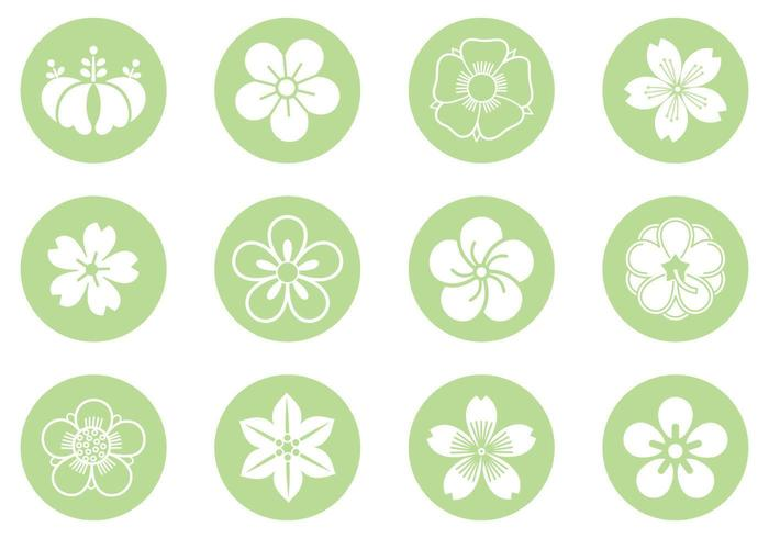Pacote de vetores de círculo floral