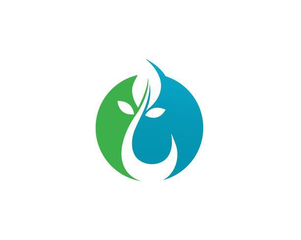 Gota de água e folha logotipo modelo ilustração vetorial vetor