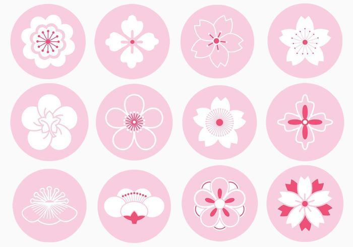 Pacote de vetores de ornamento de flor japonesa