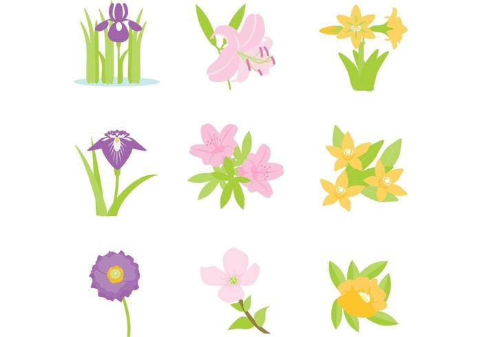 Pacote de vetores de flores coloridas