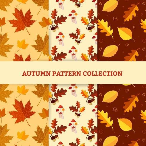 Mão desenhar padrões de outono vetor