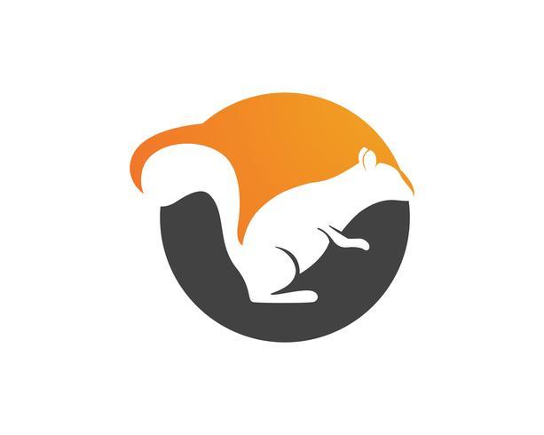 logotipo e símbolos do esquilo vetor