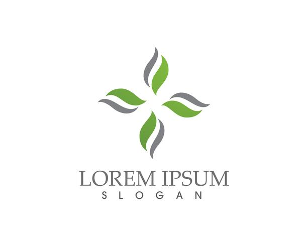 Logotipos de folha verde ecologia natureza elemento vector ícone