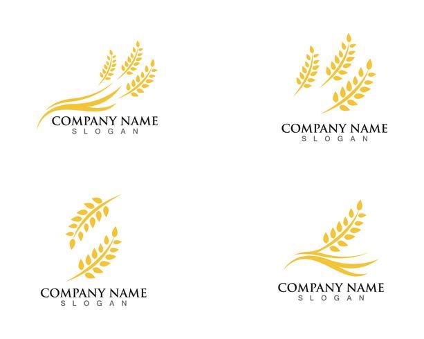 Agricultura trigo Logo Template vector ícone do design