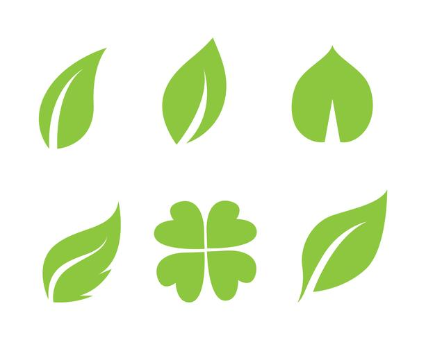 green leaf ecology ícone de vetor de elemento de natureza