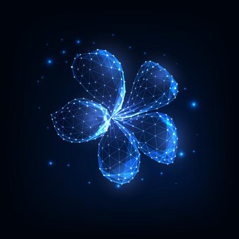 Flor poligonal de incandescência mágica bonita do plumeria baixo cercada pelas estrelas isoladas na obscuridade - azul. vetor