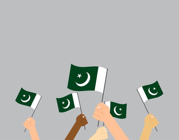 Vetorial, ilustração, de, mãos, segurando, bandeira paquistão, isolado, ligado, fundo vetor