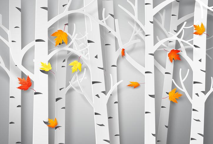 Floresta outonal com folhas de plátano de queda. vetor