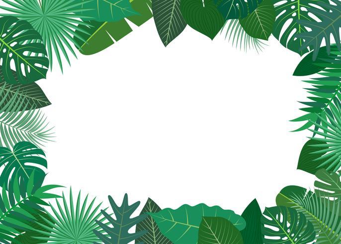 Vetorial, Ilustração, de, Quadro, feito, de, verde, tropicais, folhas, branco, fundo vetor