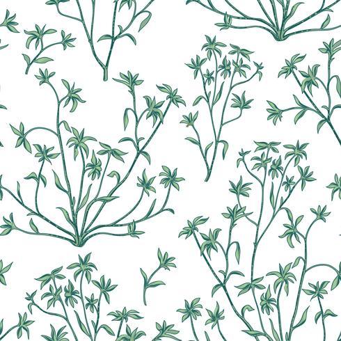 Padrão sem emenda de folhas florais. Fundo de natureza selvagem. Flourish papel de parede com plantas. vetor
