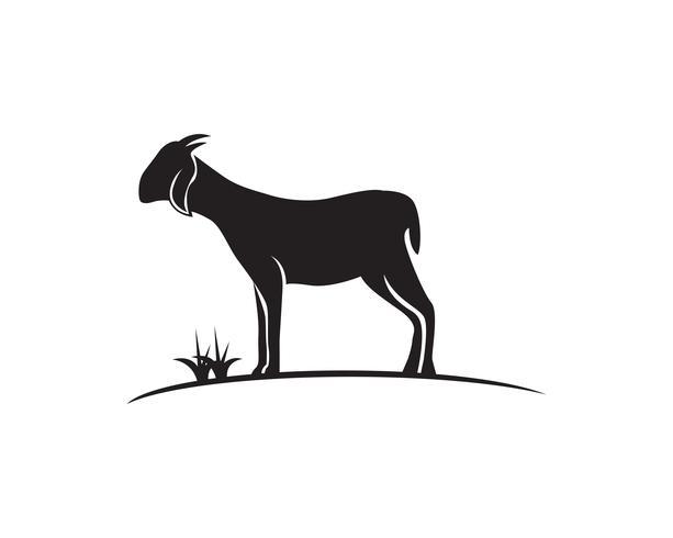 Vetor de modelo de logotipo de cabeça de cabra