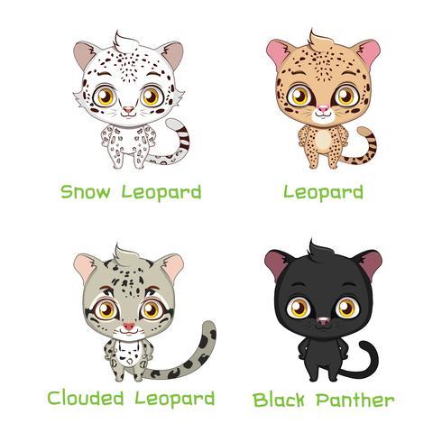 Conjunto de espécies de leopardo vetor