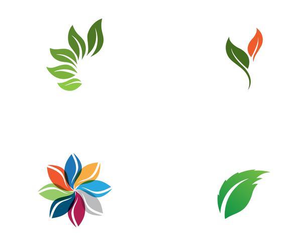 Logos de ecologia de folha de árvore verde vetor