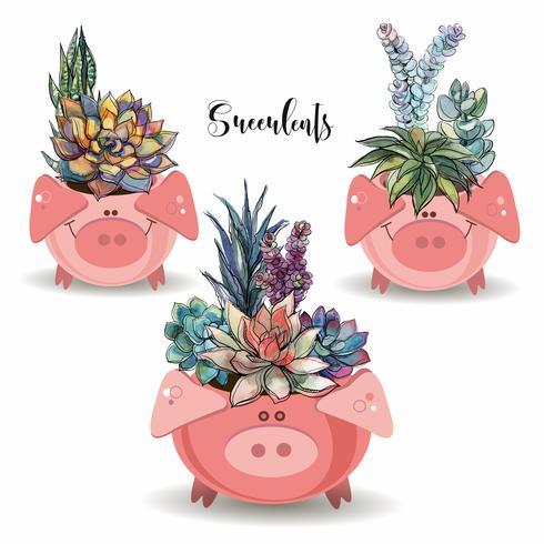 Arranjo de flores de suculentas. Em potes engraçados na forma de porcos. Ilustração vetorial vetor