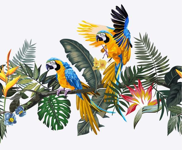 pássaro arara no padrão sem emenda de floresta exótica vetor