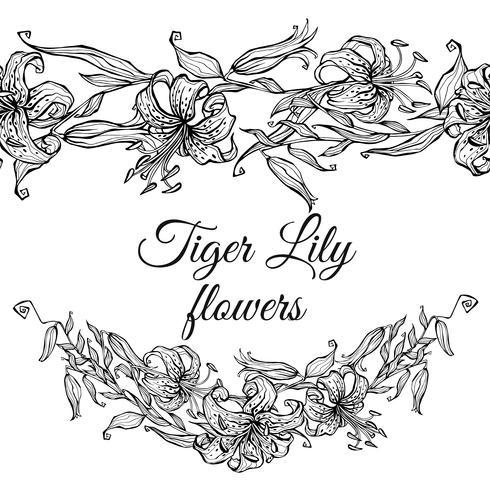 Beira do teste padrão do lírio de tigre e festão das flores. Coloração vetor