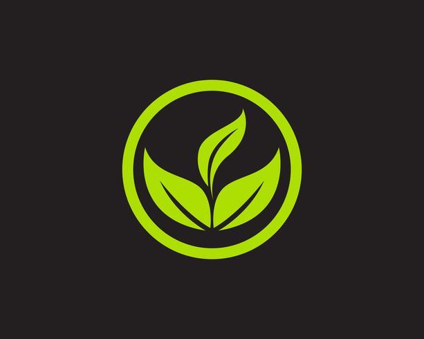 Logotipos verde folha ecologia natureza elemento vetor ícone