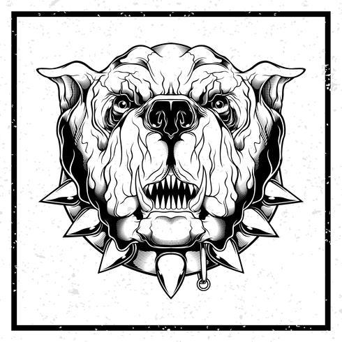 grunge style Vector illustration Closeup de buldogue furioso