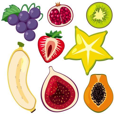 Um filé de frutas fatiadas vetor