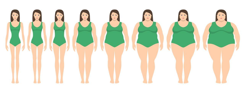 Vector a ilustração das mulheres com peso diferente da anorexia a extremamente obeso. Índice de massa corporal, conceito de perda de peso.