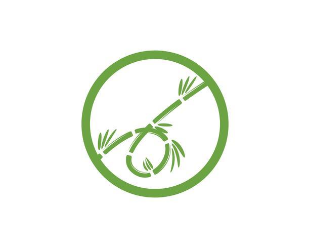 Logotipo de bambu com folha verde para o seu modelo de vetor de ícone