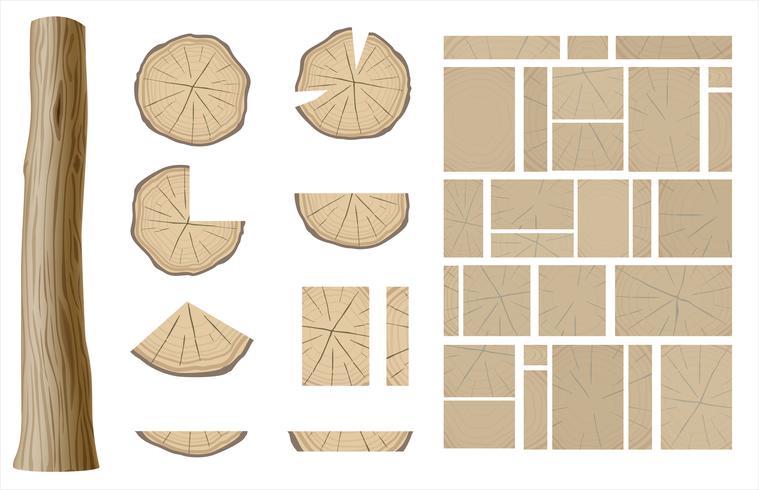 Conjunto de diferentes seções de madeira vetor