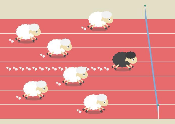 competição de ovelhas vetor