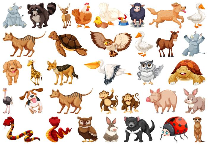 Jogo, de, animal, personagem vetor