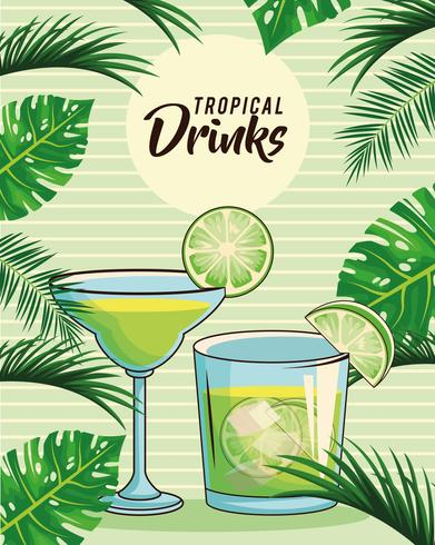 cartaz tropical das bebidas cocktail vetor