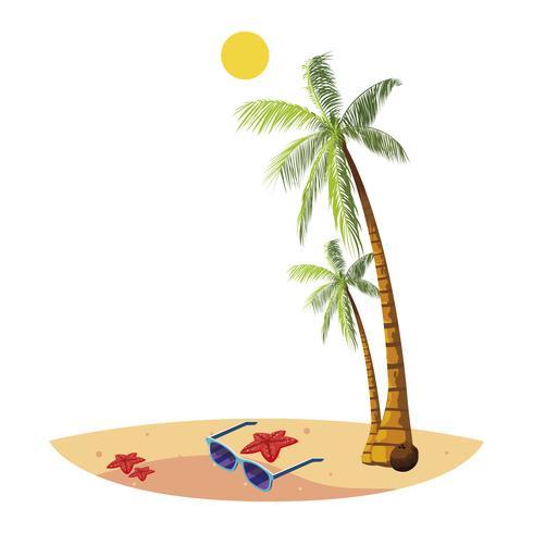 praia de verão com palmas e óculos de sol cena vetor
