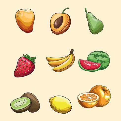 papel de parede frutas desenhadas à mão vetor