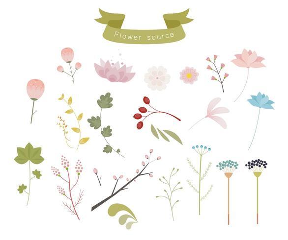 Um conjunto de decoração de plantas elegante e emocional. vetor