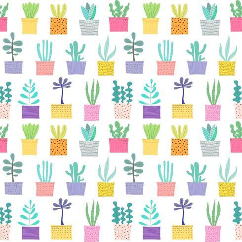 Planta suculenta sem costura de fundo vetor