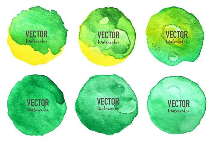 Círculo de aquarela verde em fundo branco vetor