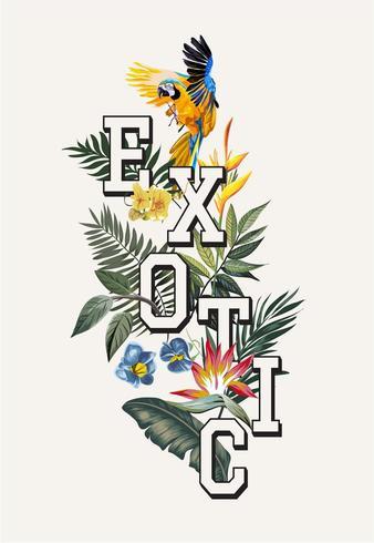 slogan exótico com pássaro arara na floresta exótica vetor